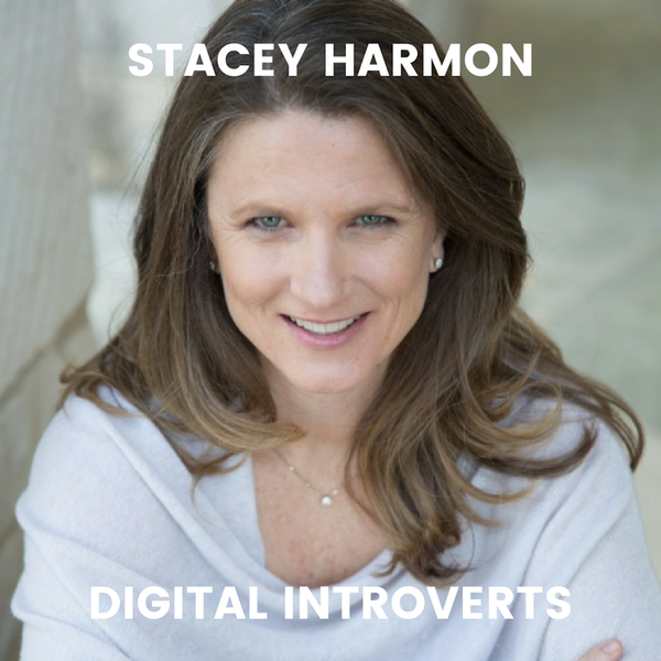Episode 21: How to Be More Productive Online With Stacey Harmon Image