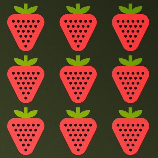 Rameneurs et sucreurs de fraises - Plougastel Daoulas (Années 1961/62 - Finistère - Bretagne - France) Image