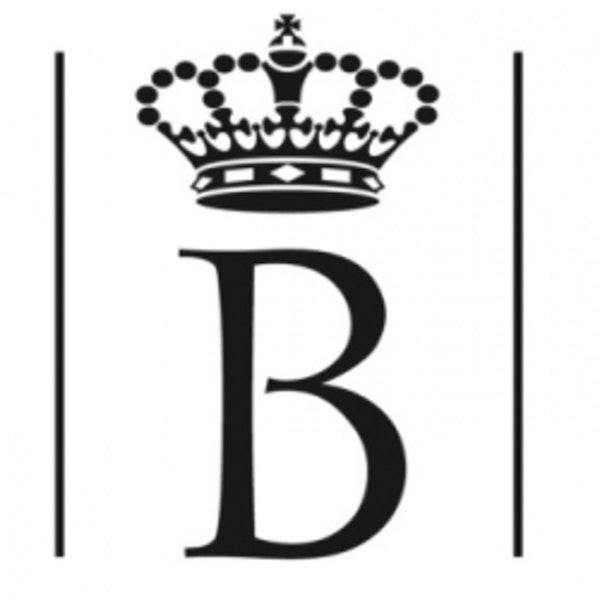 King Baudouin Foundation: Business Partnership Facility Image