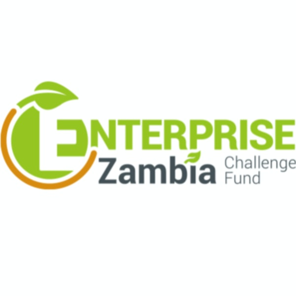 Grantor reveals key mistakes entrepreneurs make. Mark Ireland--Enterprise Zambia Challenge Fund