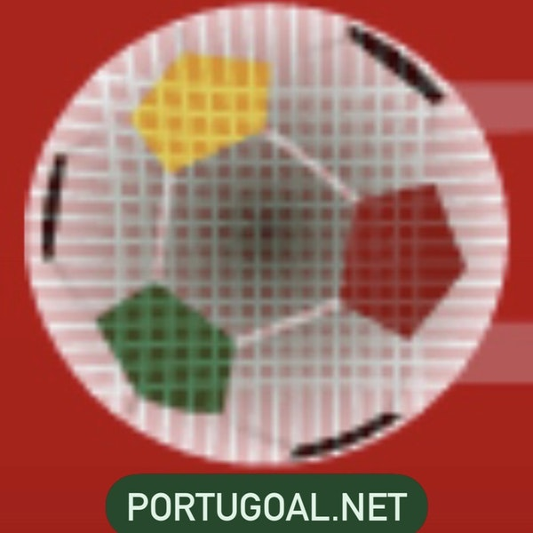 #10: Tom Kundert of PortuGOAL.net Image