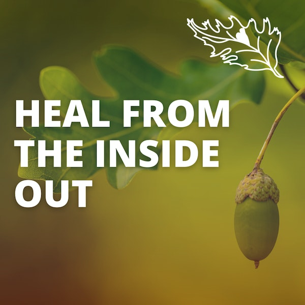 Heal From The Inside Out From The Domino Diet with Karrie Cassel Image