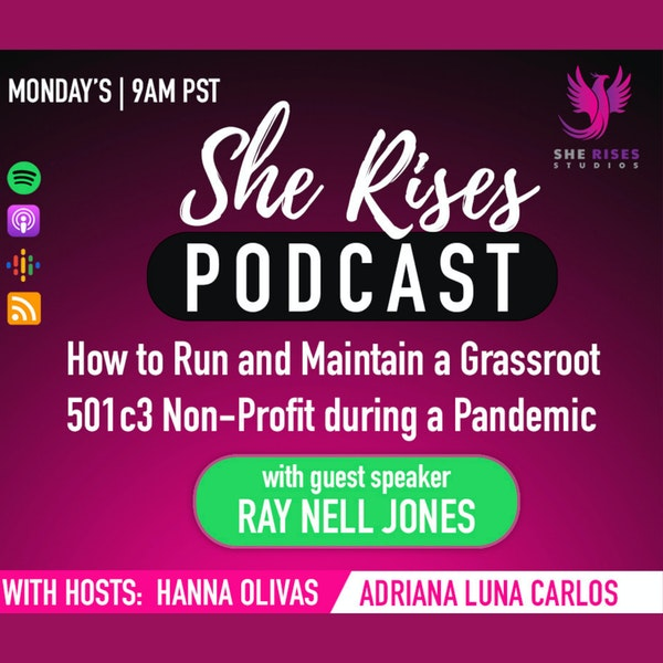 How to Run and Maintain a Grassroot 501c3 Non-Profit during a Pandemic with Ray Nell Jones Image