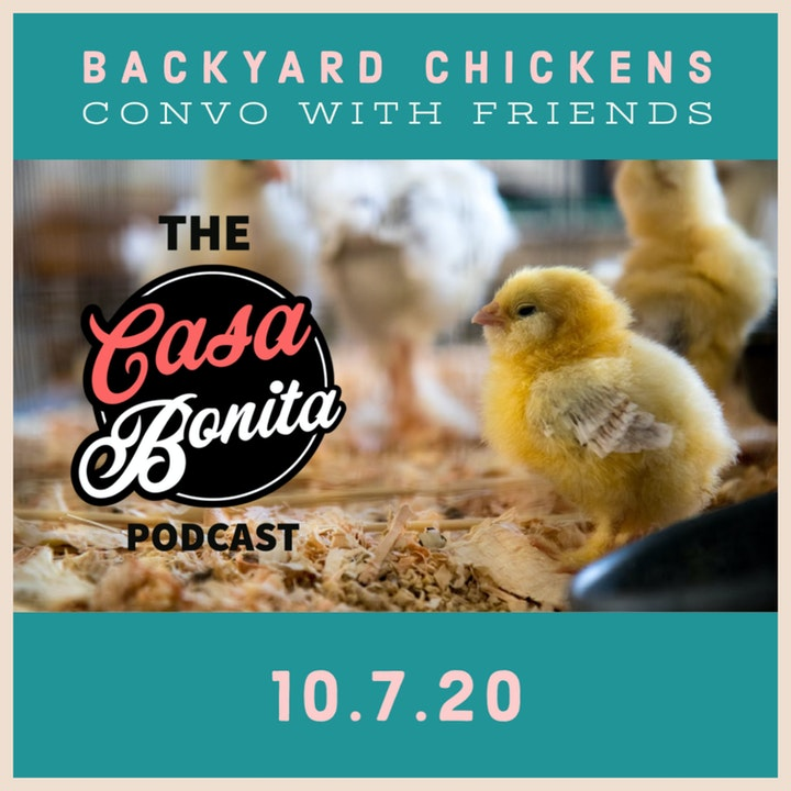 Backyard Chickens Convo with Friends