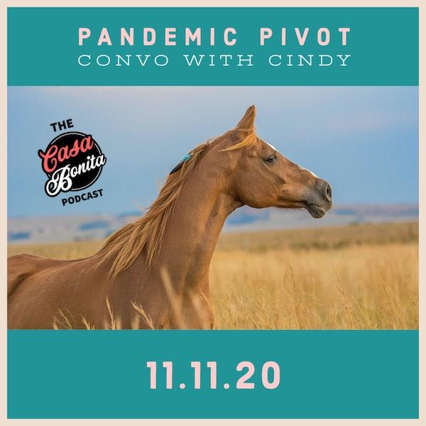 S1 E9: Pandemic Pivot Convo with Cindy Image