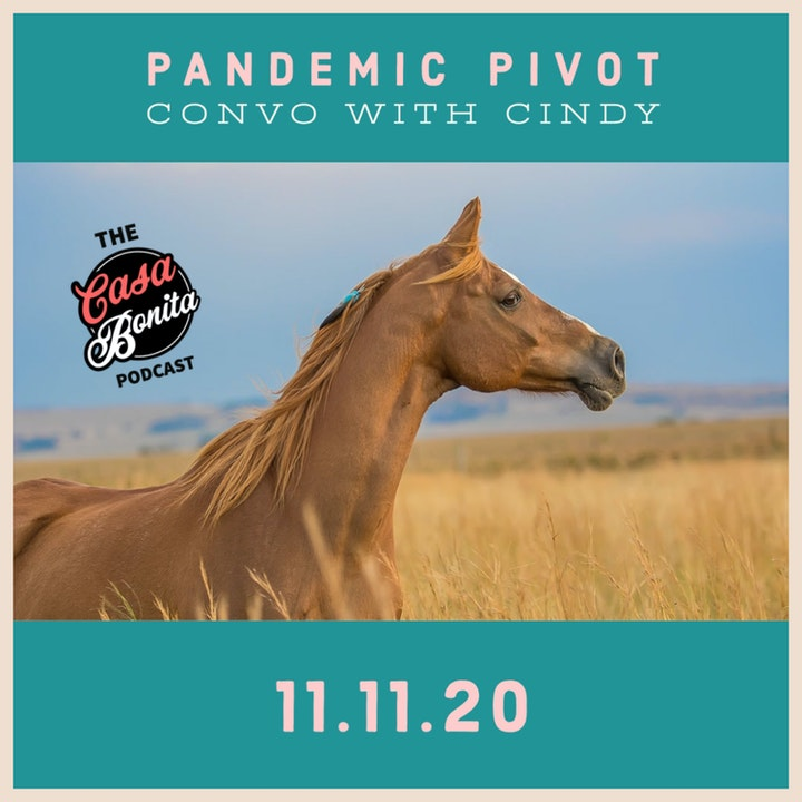 S1 E9: Pandemic Pivot Convo with Cindy