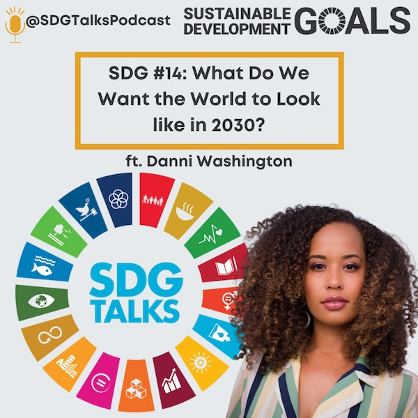 SDG #14: What Do We Want the World to Look Like in 2030? with Danni Washington Image
