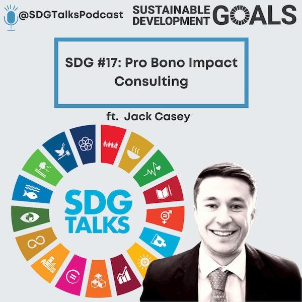 SDG #17: Pro Bono Impact Consulting with Jack Casey Image