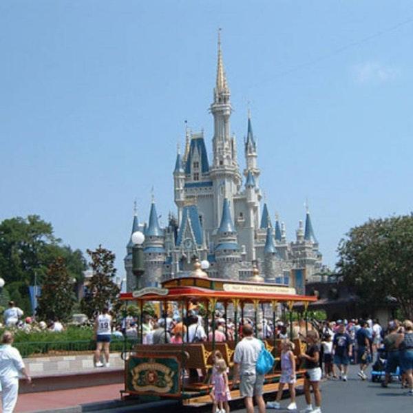 Disney Dish Episode 1 - A Live Walk Through the Magic Kingdom
