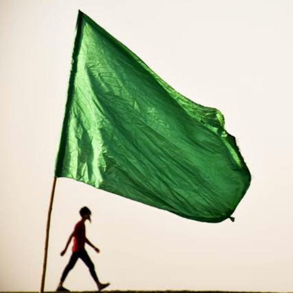 Let's talk about GREEN FLAGS ✅✅