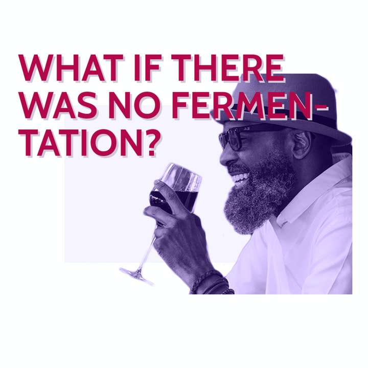 Episode image for What if fermentation didn't exist?