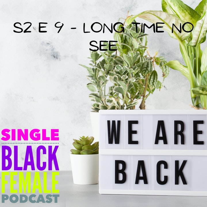 Long Time No See - S2 E9
