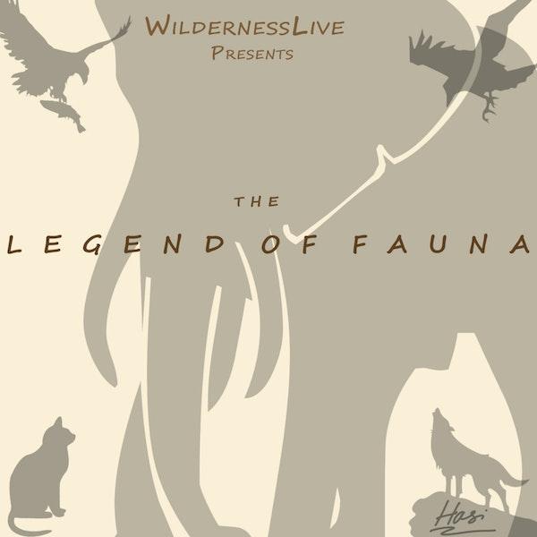 Pilot- The Legends of Fauna