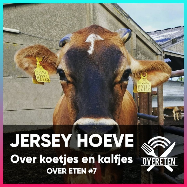 De Jerseyhoeve, over koetjes, kalfjes en melk - Over eten #7