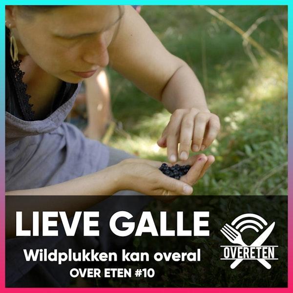 Wildplukken met Lieve Galle - Over eten #10 Image