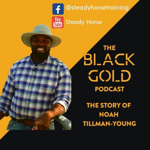 Horses & Courses: The Story of Noah Tillman-Young