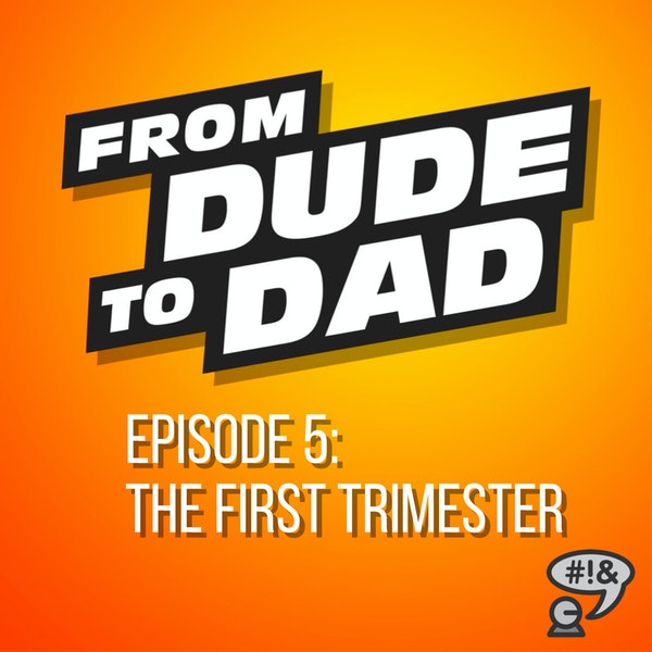 The First Trimester (A Summary for New Dads) Image