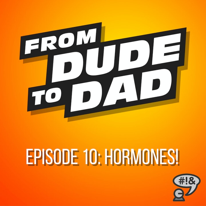 Hormones! (A Guide For Dads-To-Be)