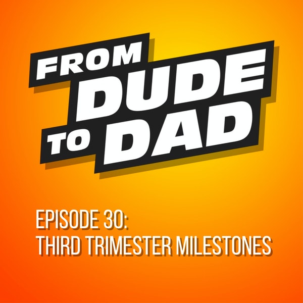 Third Trimester Milestones (A Summary For New Dads) Image