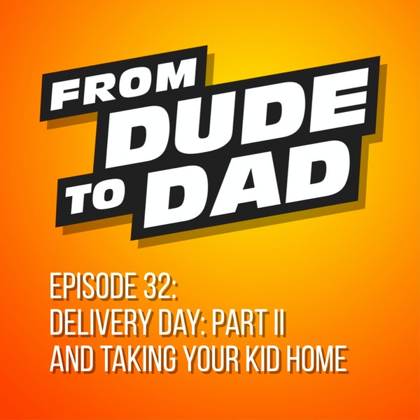Delivery Day: Part II And Taking Your Kid Home Image