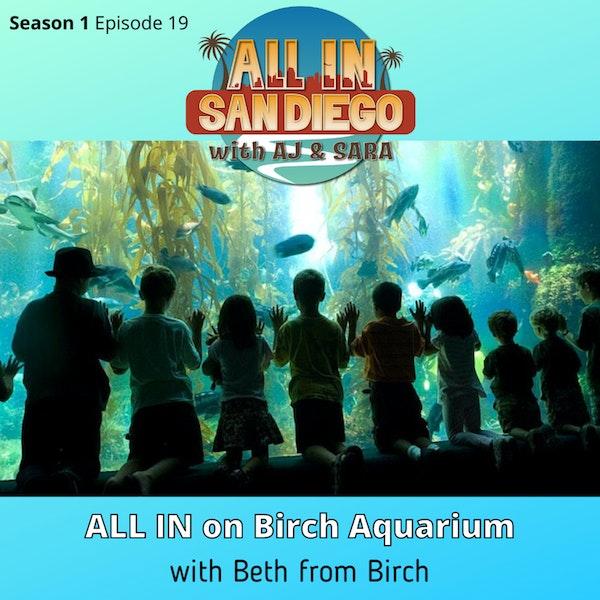 ALL IN on Birch Aquarium