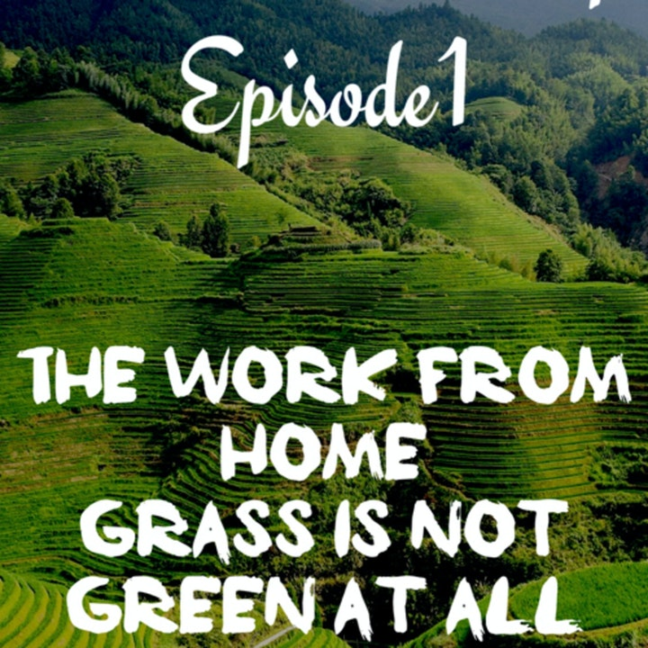 *Social Distancing- Episode 1; The Work From Home Grass is Not Green At All