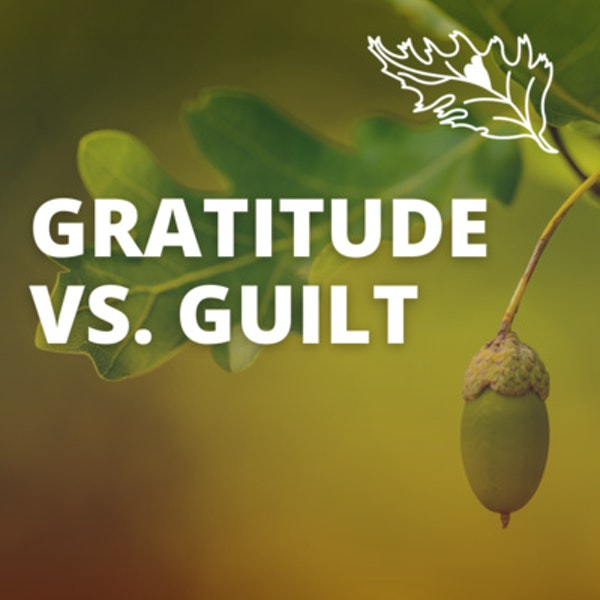 From Guilt to Gratitude with Dawn Mathis Image