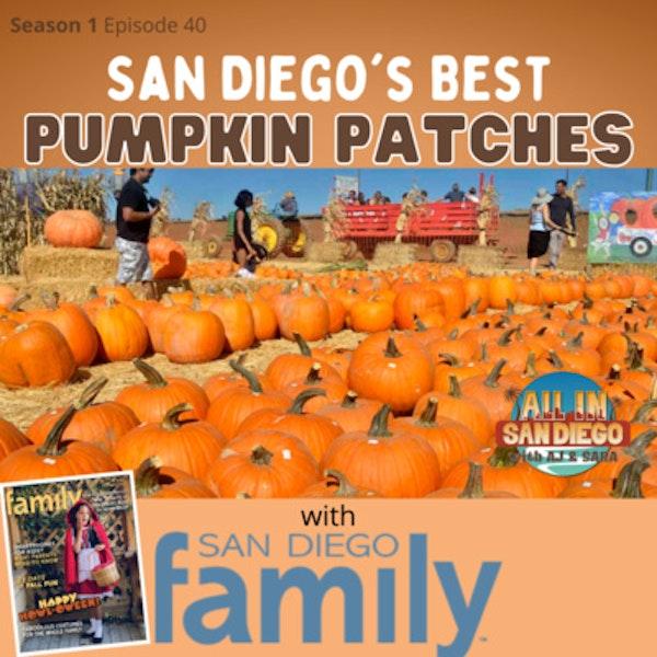 San Diego's Best Pumpkin Patches