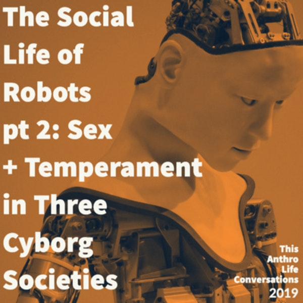 The Social Life of Robots, pt 2: Sex and Temperament in Three Cyborg Societies Image