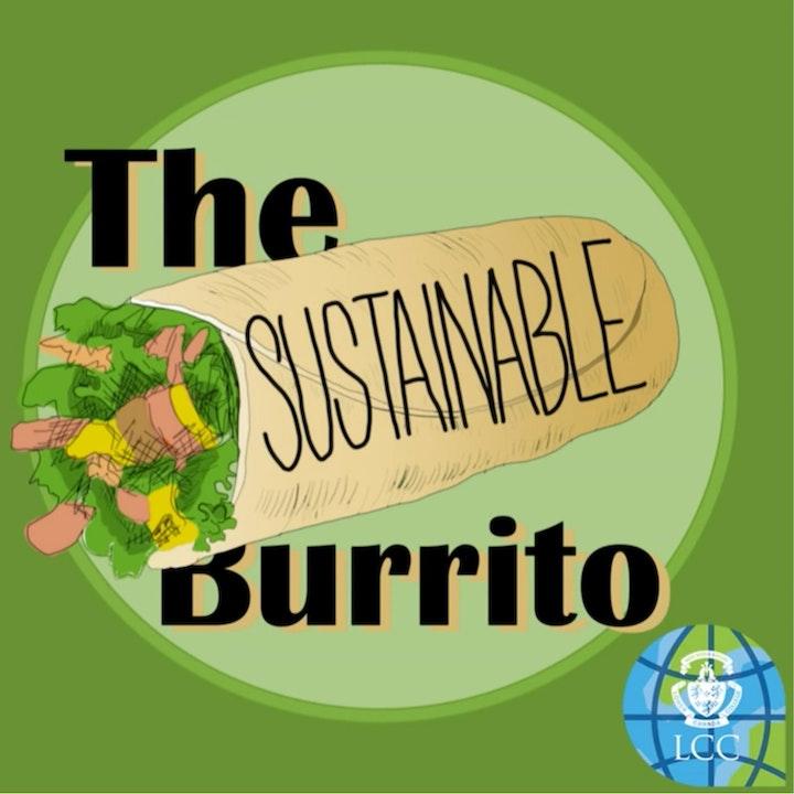 The Sustainable Burrito