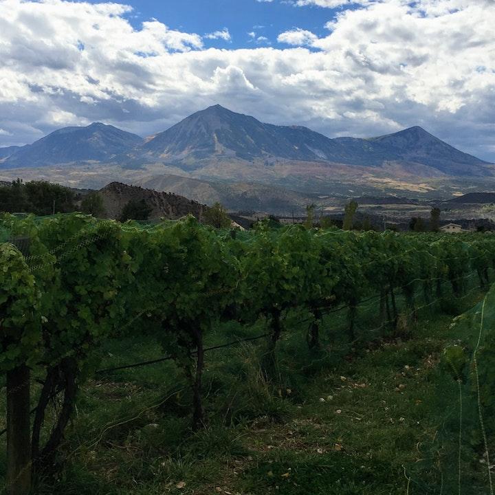 Colorado: Wine Enthusiast Top 10 Wine Getaways