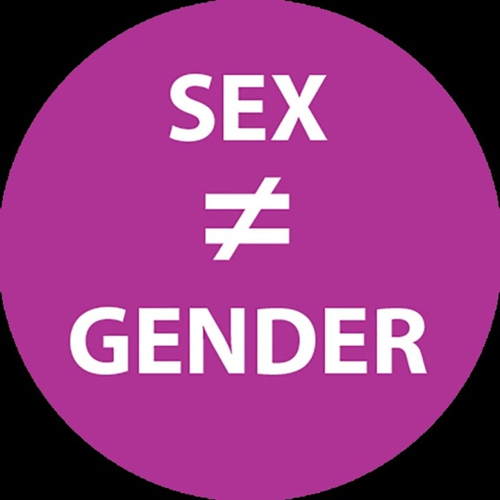 Sex Gender Transgender Misgendering and the Church
