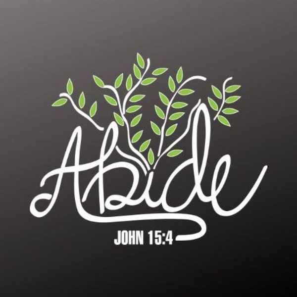 What Does it Mean To Abide In Christ Pt 2
