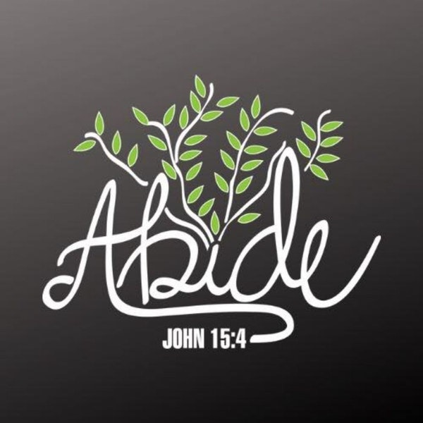 What Does it Mean To Abide In Christ Pt 2 Image