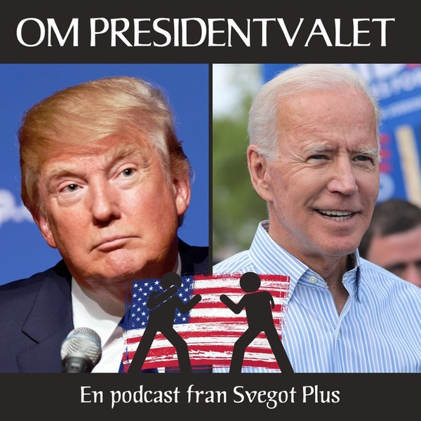 Om amerikanska presidentvalet 2020