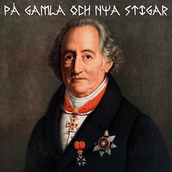 11. Johann Wolfgang von Goethe - tyskarnas diktarfurste
