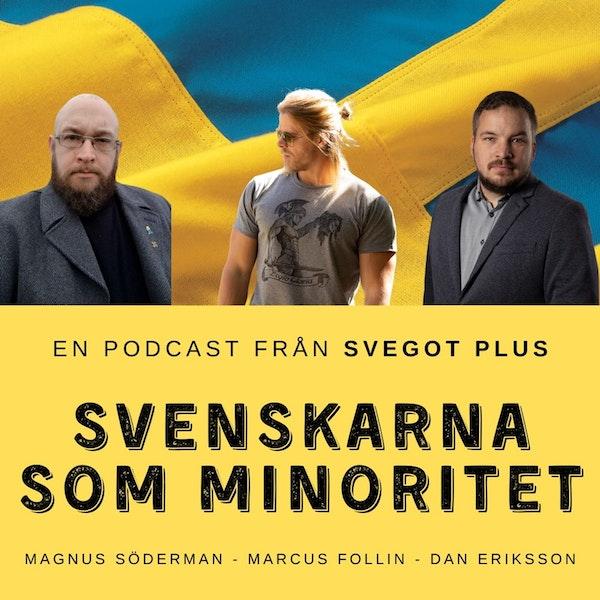 Om svenskarna som minoritet