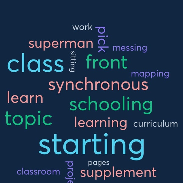 Asynchronous Schooling