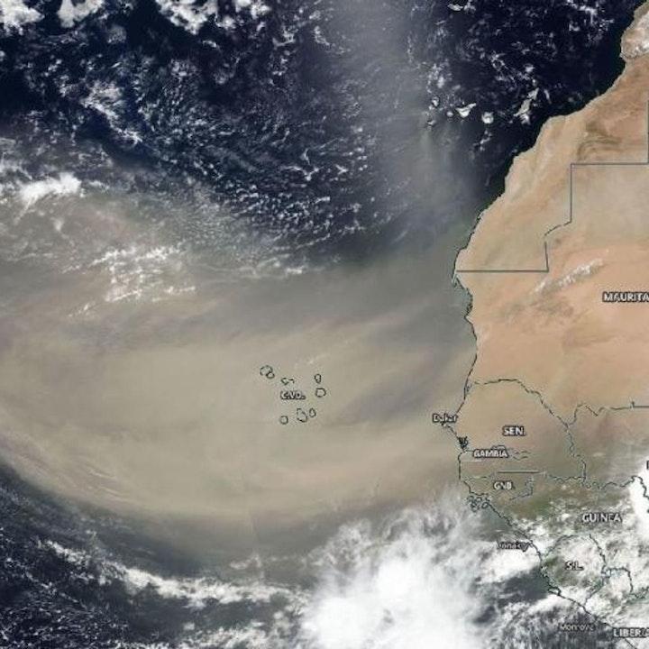 #ENTREVISTA   Polvo del Sahara se irá a mediados de Agosto, señala agrometeorólogo Agustin Moreira