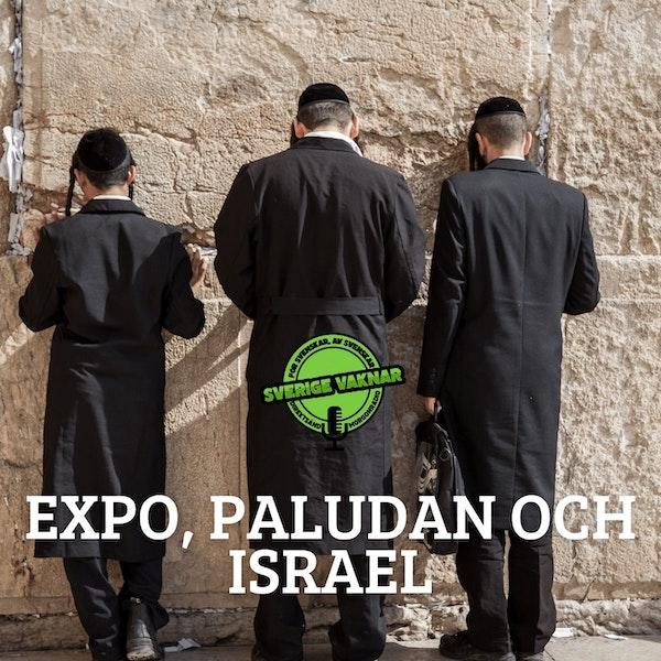 366. Expo, Paludan och Israel
