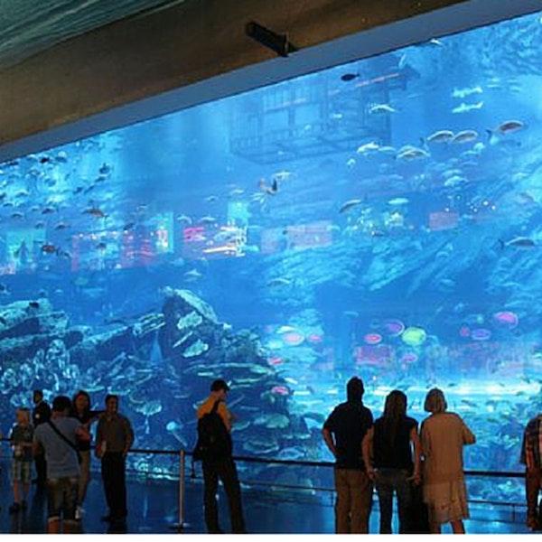 2: Travel First Ep.1 - Dubai