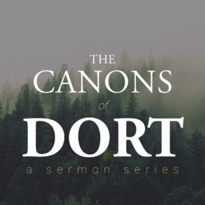 Theological Musings Canons of Dort: Theological Overview Pt 1