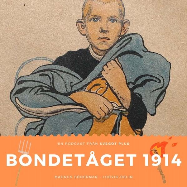 Om bondetåget 1914