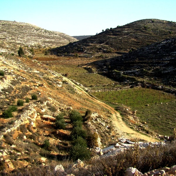 The Valley of Beracha Image