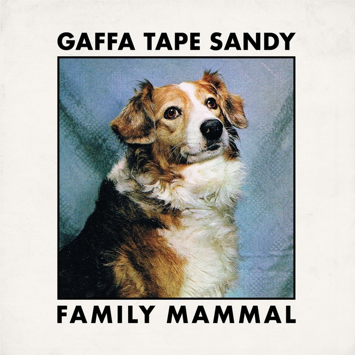Family Mammal: Gaffa Tape Sandy (Pick A Disc's Best of 2019)
