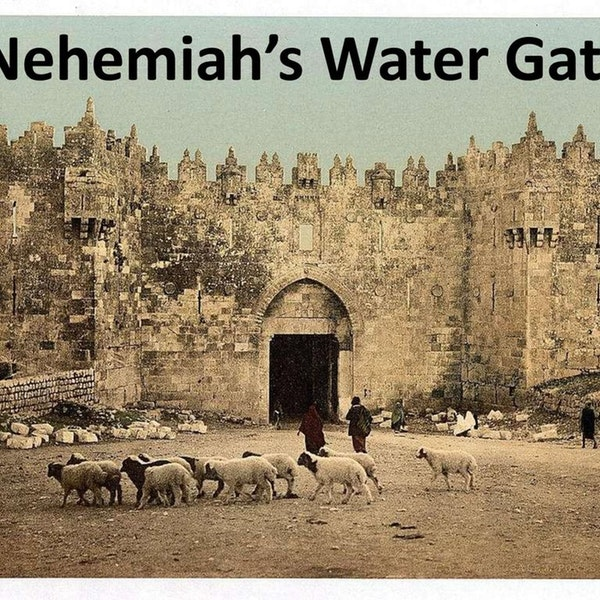 What Happened at the Water Gate Image