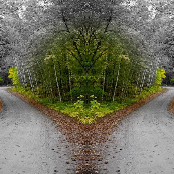 The Choice to Make Image