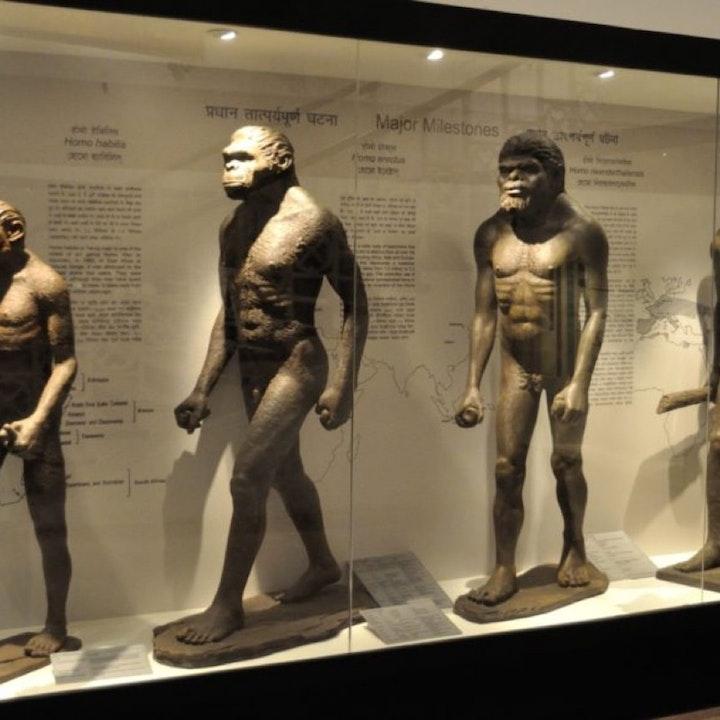 Evolution vs The Bible
