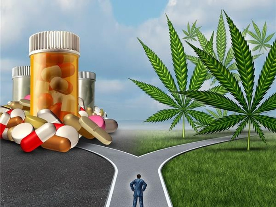 The Choice Is YOURS! Medical Cannabis Or Prescription Opioids