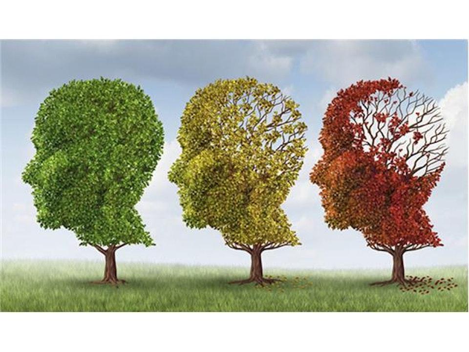 D4T • How Dementia Lurks Near YOU